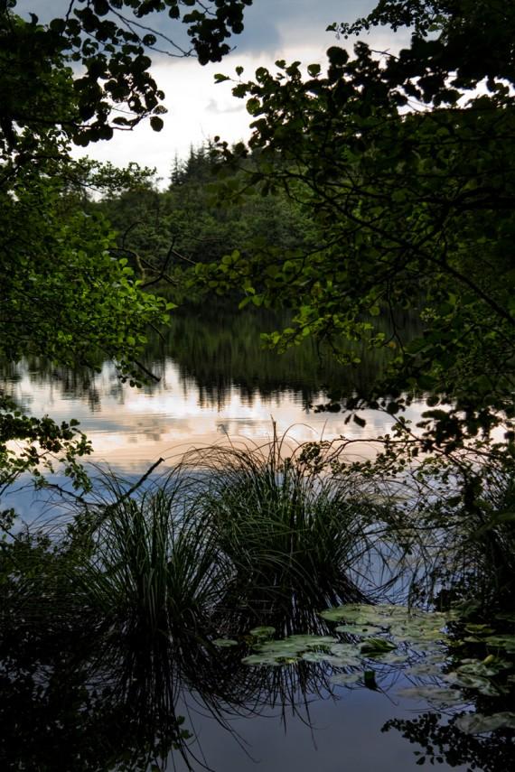 Der stille See