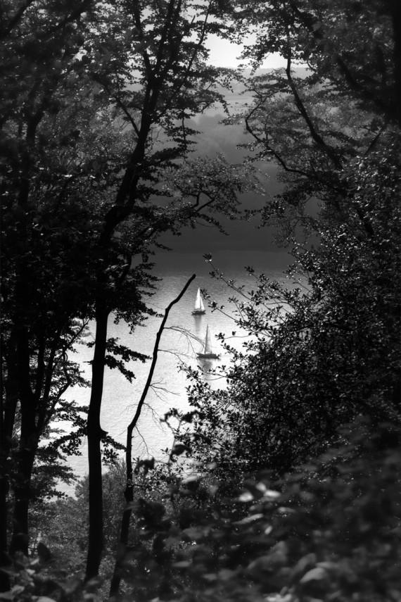 Segelboote im Wald